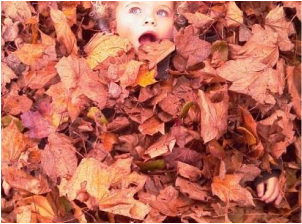 Fall Leaves with little girl buried